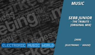 music_sebb_junior_-_the_tribute_original_mix